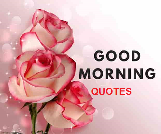 Good Morning Quotes to Help You to Start Your Day Right