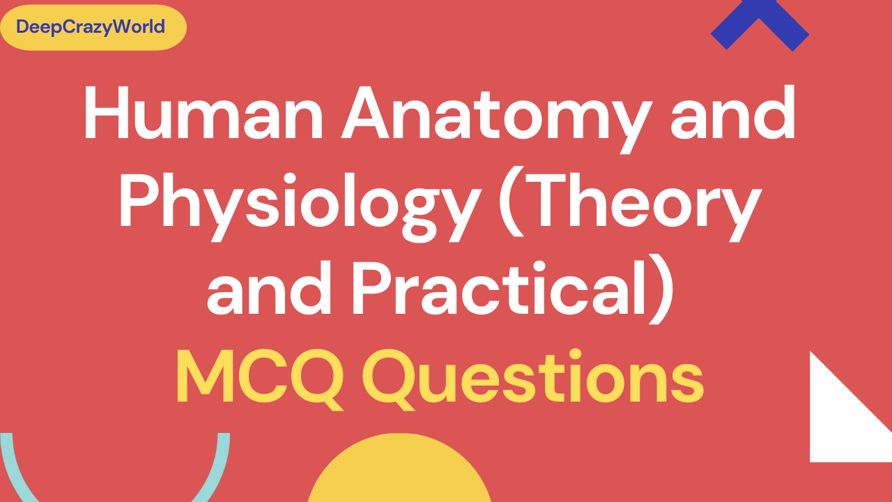 Human Anatomy and Physiology (Theory and Practical) MCQ Questions
